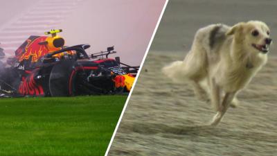 Куче спря втората тренировка на Люис Хамълтън в Бахрейн