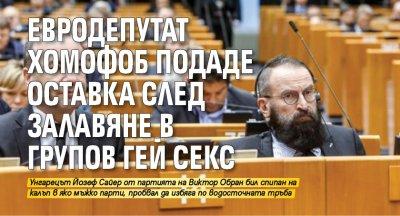 Евродепутат хомофоб подаде оставка след залавяне в групов гей секс