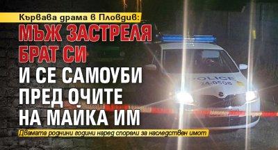 Кървава драма в Пловдив: Мъж застреля брат си и се самоуби пред очите на майка им