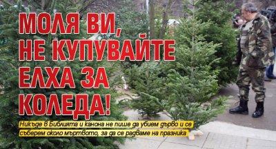 Моля ви, не купувайте елха за Коледа!