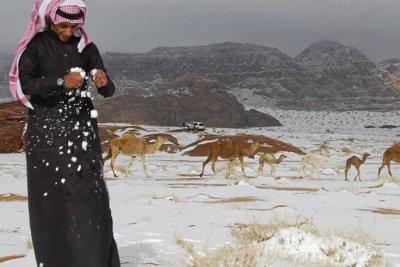 Климат извън контрол - сняг и студ в Сахара
