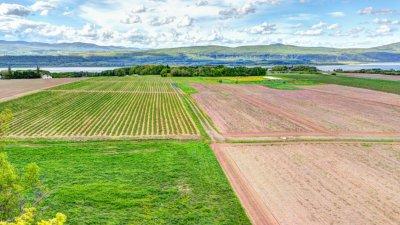 Бил Гейтс стана най-големият собственик на земеделска земя в САЩ