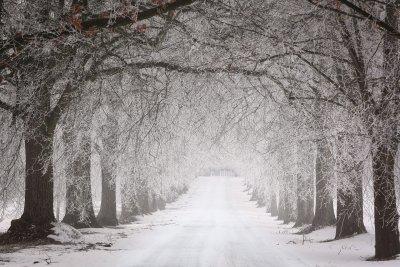 Кога си тръгва сибирският студ?