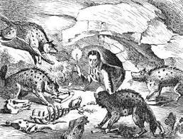 Откриха останки от животно на 547 млн. години