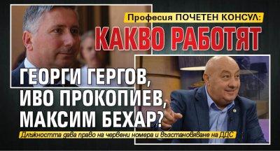 Професия ПОЧЕТЕН КОНСУЛ: Какво работят Георги Гергов, Иво Прокопиев, Максим Бехар?