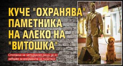 "Куче ""охранява"" паметника на Алеко на ""Витошка"""