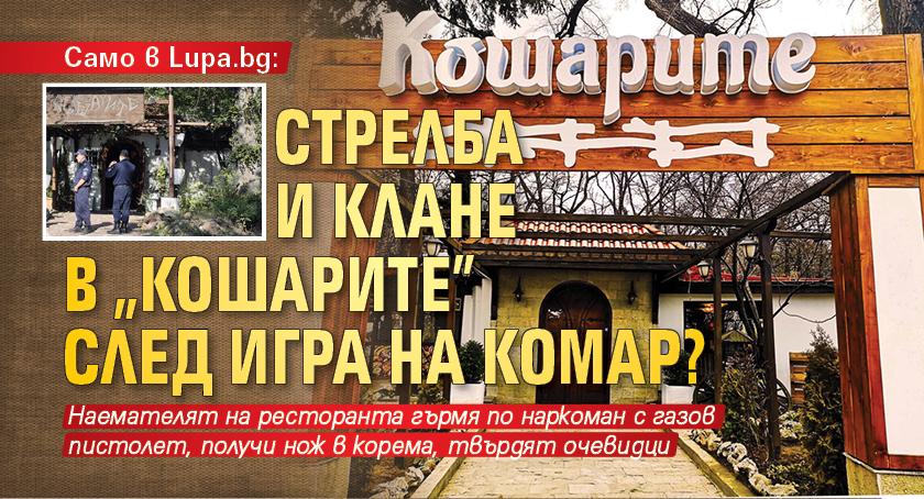 """Само в Lupa.bg: Стрелба и клане в """"Кошарите"""" след игра на комар?"""