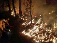снимка 3 Огромен пожар евакуира хиляди на Канарите (СНИМКИ)